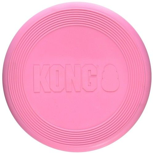 Kong puppy flyer frisbee