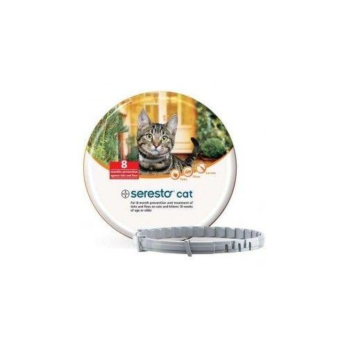 Bayer Seresto collar Gatos