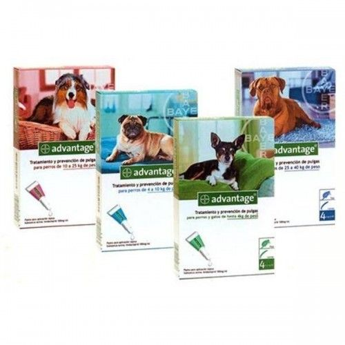 Ecuphar Advantage perro pipetas antiparasitarias 4 pipetas 1-4 Kg