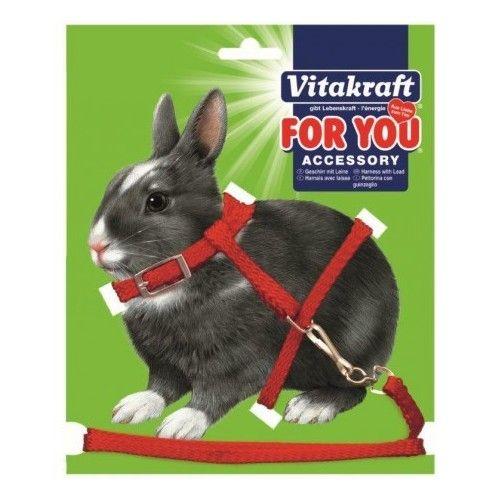 Vitakraft Arnés y correa (Conejos/Cobayas)