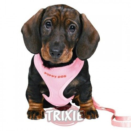 Trixie Set Cachorros Acolchado, 26-34cm/10mm, 2m, Rosa