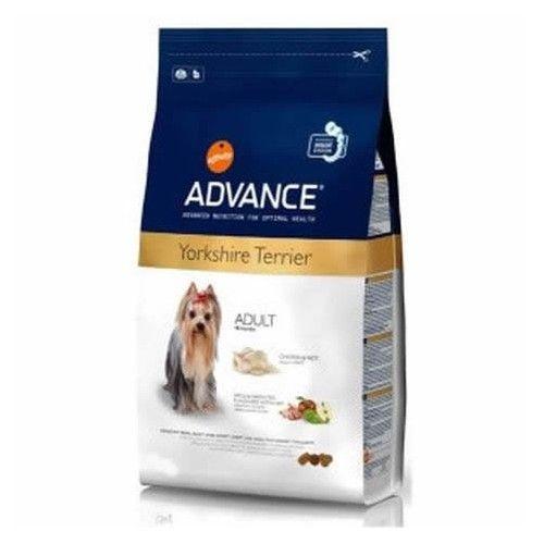 Advance raza mini adult yorkshire terrier 1,5 Kg