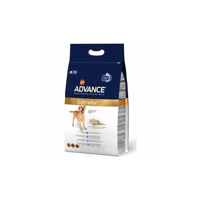 Advance raza labrador retriever 12 Kg