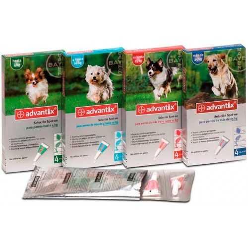 Bayer Pipetas advantix de 1 a 4 kg 24 pipetas