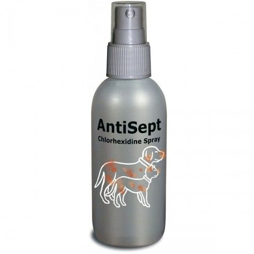 Antisept Clorhexidina Spray 100ml