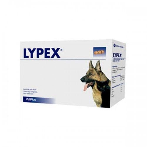 Lypex complemento pancreatico blister 60 cápsulas
