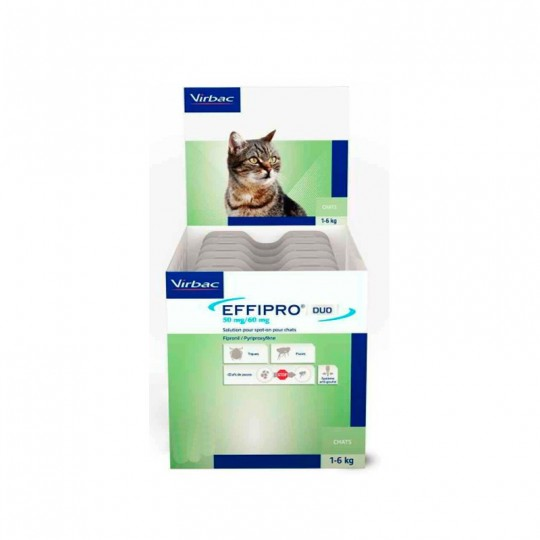 Effipro Duo Spot On Pipetas Para Gatos 4 Pipetas