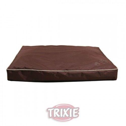Cojin drago, 90x65 cm, marron
