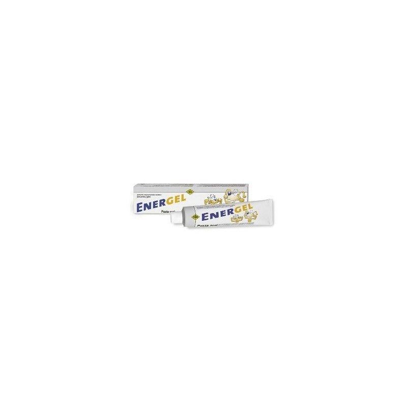 Fatro Energel pasta oral 80 gr